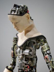 The Autonomous Robots